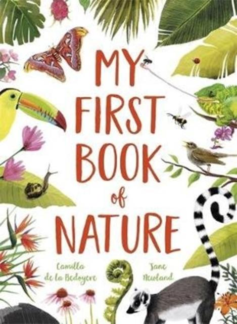 My First Book of Nature Popular Titles Templar Publishing