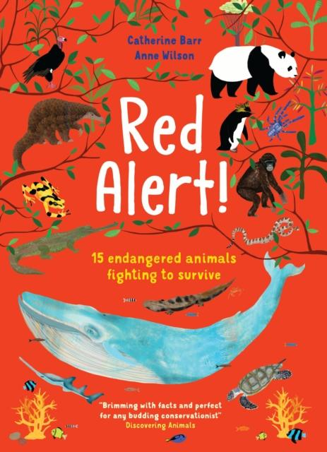 Red Alert! : 15 Endangered Animals Fighting to Survive Popular Titles Otter-Barry Books Ltd