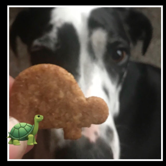 TURTLE Shaped Dog Treats