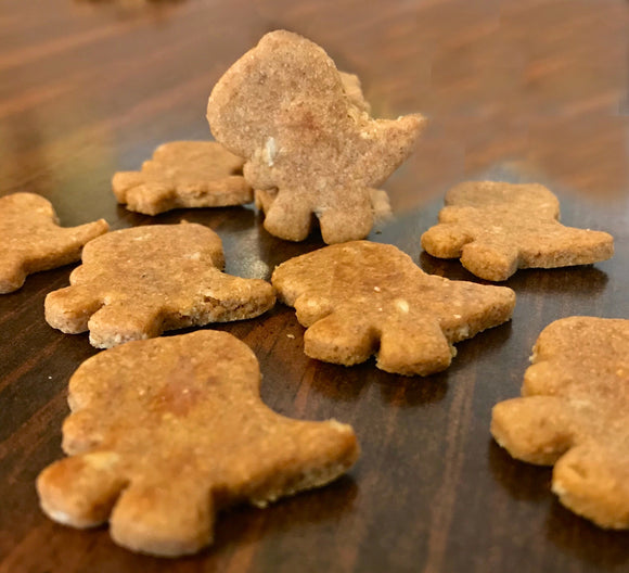 T-Rex Dinosaur Shaped Dog Treats!