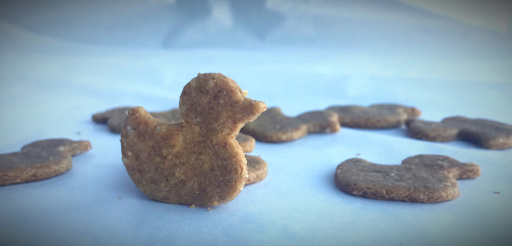 DUCKY Shaped Dog Treats!