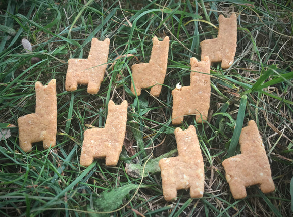 LLAMA Shaped Dog Treats!