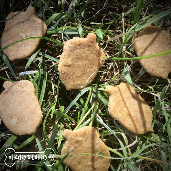 Acorn shaped Dog Treats!