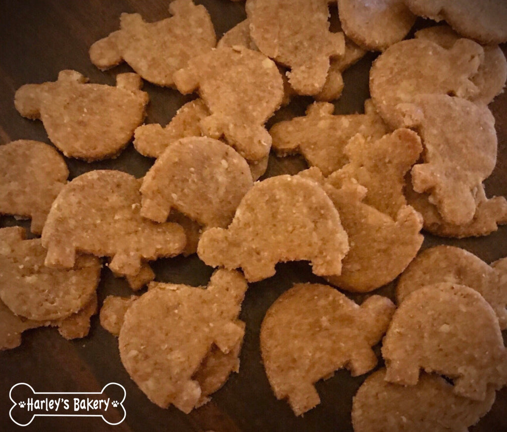 Squirrel shaped Dog Treats!