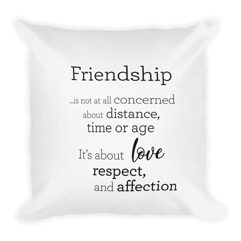 Friendship - Pillow / Vinátta - Púði
