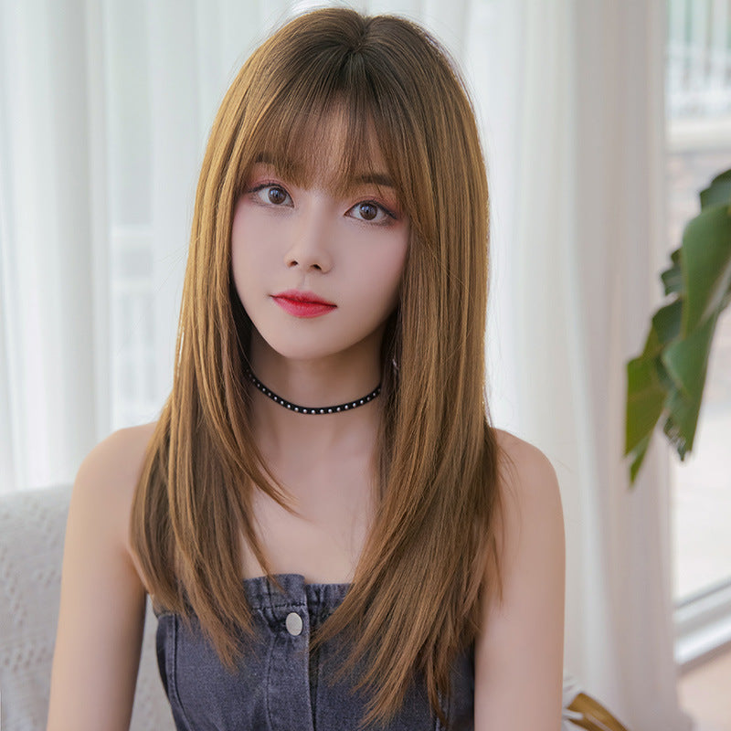 """BLACK BROWN LONG STRAIGHT"" WIG H041909"
