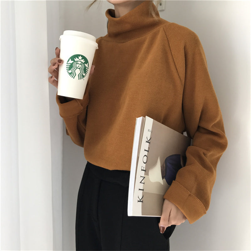 """CHIC RETRO TURTLENECK"" PULLOVER KNIT TOP K090801"