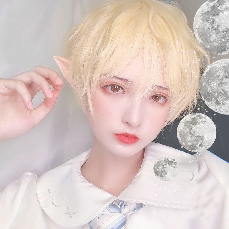 """LOLITA GAY WIG MALE SHORT BLOND"" WIG D071509"