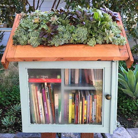 Luxuread Free Book Street Library Succulent Planter