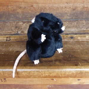 Plague Rat Hand Puppet