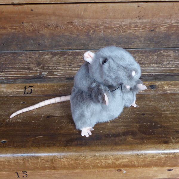 Grey plush rat hand puppet with light pink felt paws, ears and nose and a pink felt tail. Photographed in the Globe Theatre.