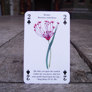 Shakespeare's Flowers Playing Cards