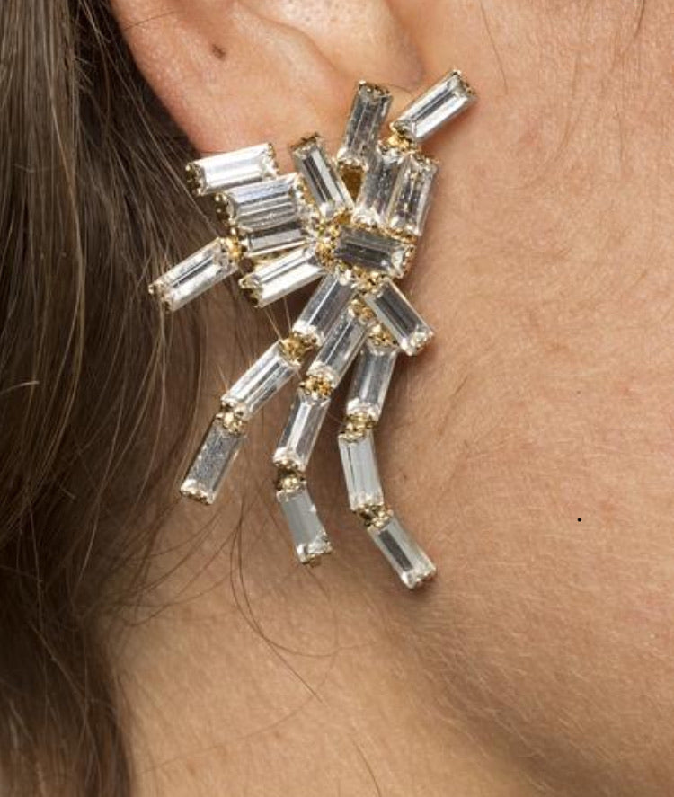 SUPER EARRINGS