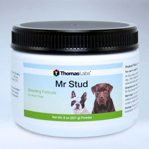 Mr Stud - 8 oz