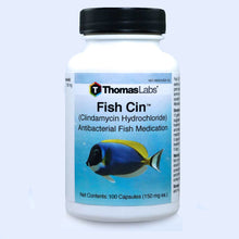 Load image into Gallery viewer, Fish Cin - Clindamycin 150 mg Capsules