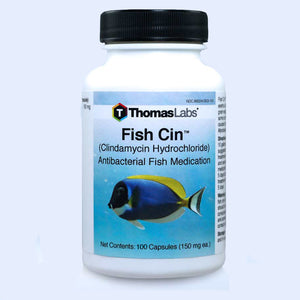 Fish Cin - Clindamycin 150 mg Capsules
