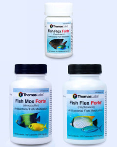 Fish Antibiotics Variety Package - 3 Count