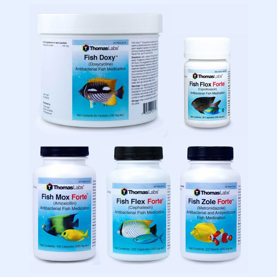 Fish Antibiotics Variety Package - 5 Count