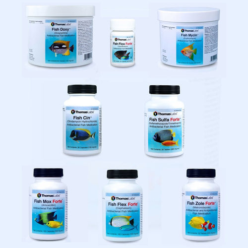 Fish Antibiotics Variety Package - 8 Count