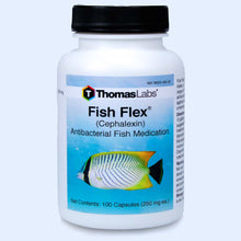 Load image into Gallery viewer, Fish Flex - Cephalexin/Keflex 250 mg Capsules