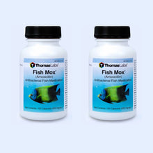 Load image into Gallery viewer, Fish Mox - Amoxicillin 250 mg Capsules