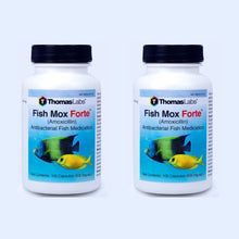 Load image into Gallery viewer, Fish Mox Forte - Amoxicillin 500 mg Capsules