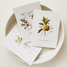 Wellbeing Postcards - The Set of Three