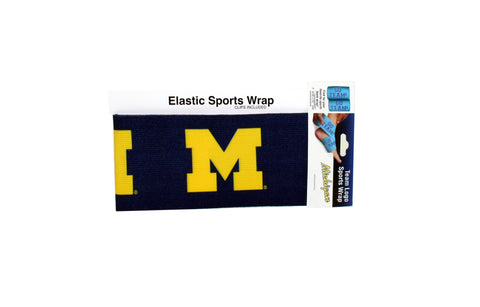 Michigan Wolverines Sports Wrap