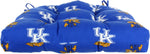 "Kentucky Wildcats D Cushion 20"" x 20"""