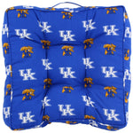 Kentucky Wildcats Floor Pillow