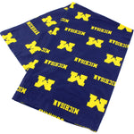 Michigan Wolverines Body Pillow Pillowcase