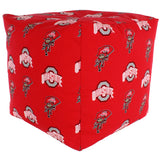 Ohio State Buckeyes Cube Cushion