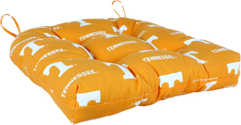 Tennessee Volunteers D Cushion