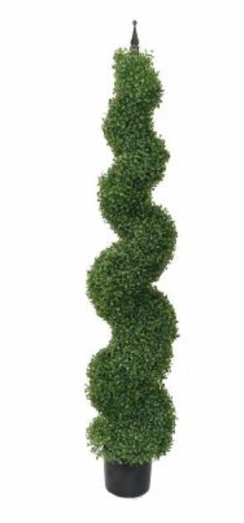 Large Boxwood Topiary - Thompsons Vintage Treasures