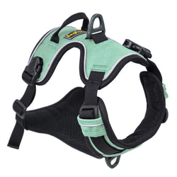 Alpine Reflective Harness- Bermuda