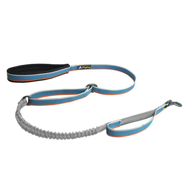 Urban Trail Adjustable Spring Leash - Air Blue