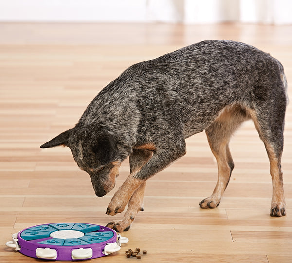 Nina Ottosson Dog Twister- Interactive Toy