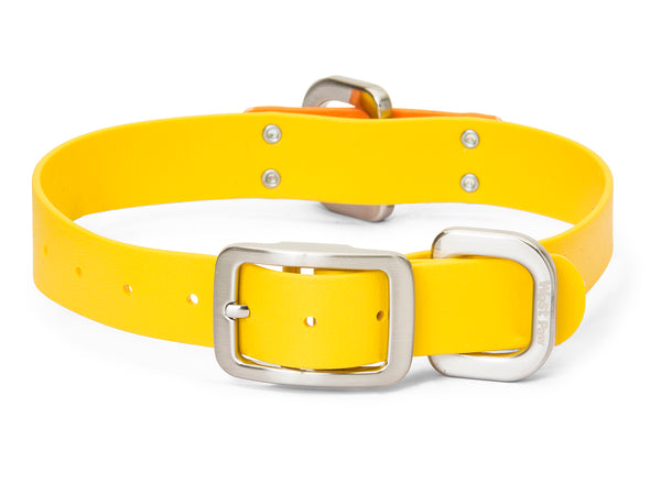 Jaunts Collar
