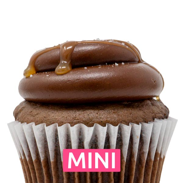 Chocolate Caramel Salty Mini Cupcakes - Dozen
