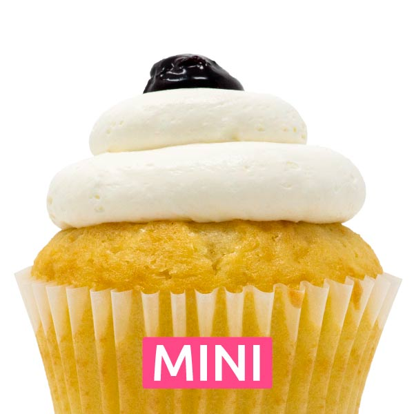 Blueberry Bliss Mini Cupcakes - Dozen