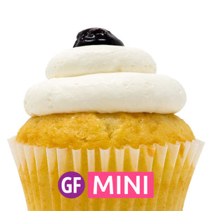Gluten-Free - Blueberry Bliss Mini Cupcakes - Dozen