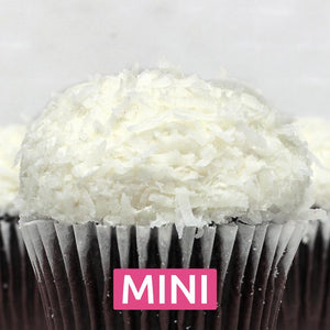 Chocolate with Coconut Mini Cupcakes - Dozen