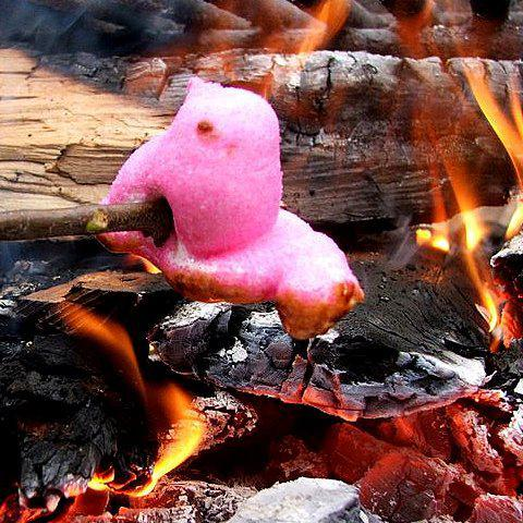 Marshmallow Peep melting over a fire