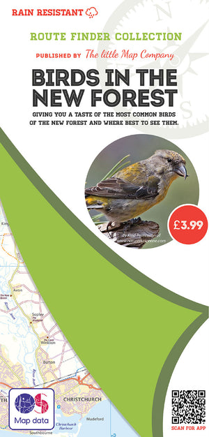 scan of Birds in the New Forest Walks Map | The Little Map Company nature