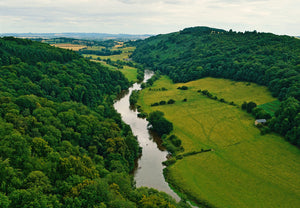 photo of Forest of Dean views