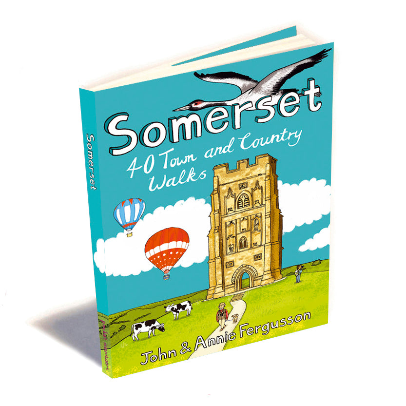 Somerset - 40 Town & Country Walks Book image