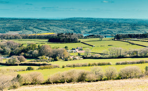 photo of The Mendips views