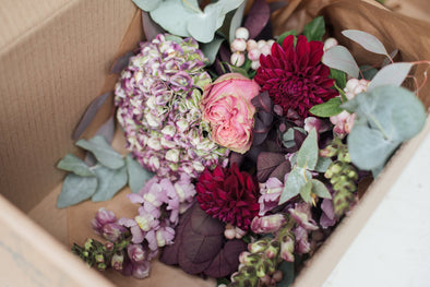 11 Flower Myths Busted