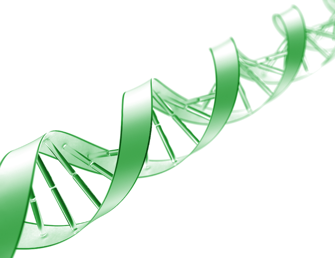 Purpose of gDNA Extraction & Tips For Success