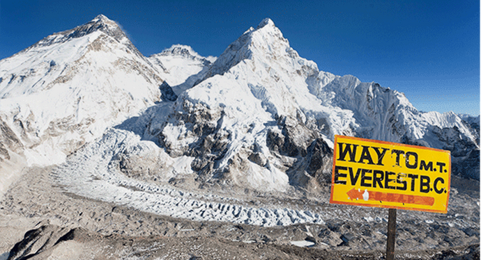 Peak Performance: How Everest Altitudes Impact Gene Expression